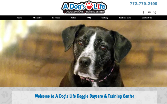A Dogs Life Doggie Daycare Vero Beach. This link opens new window.